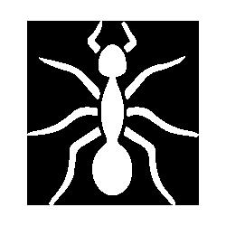 Унищожаване на мравки от фирма Профи Пест Контрол Пловдив
